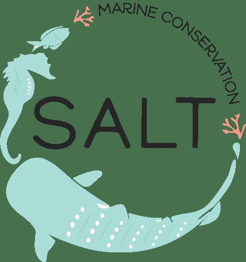 SALT logo for web