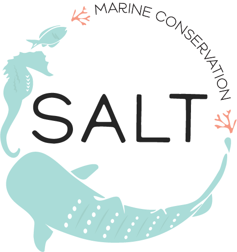 SALT logo for web